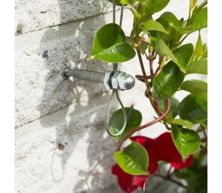 Acheter nature ensemble de treillis m tallique pour for Solde plante exterieur