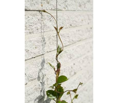 nature ensemble de treillis m tallique pour plantes. Black Bedroom Furniture Sets. Home Design Ideas