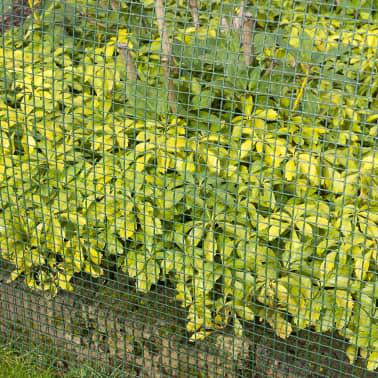 Nature Brise-vue en maille carré 10x10 mm 1x3 m Vert[3/4]