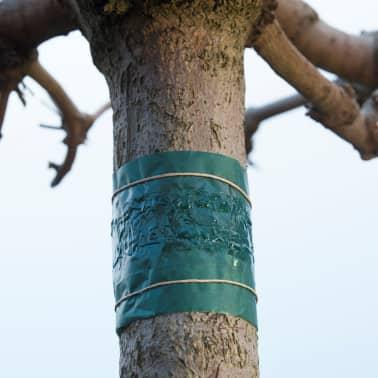 Nature Cinta adhesiva para control de plagas 150 cm 6060134[2/3]