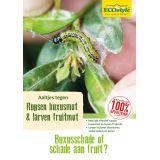 Aaltjes tegen larven fruitmot 60m2 ECOstyle