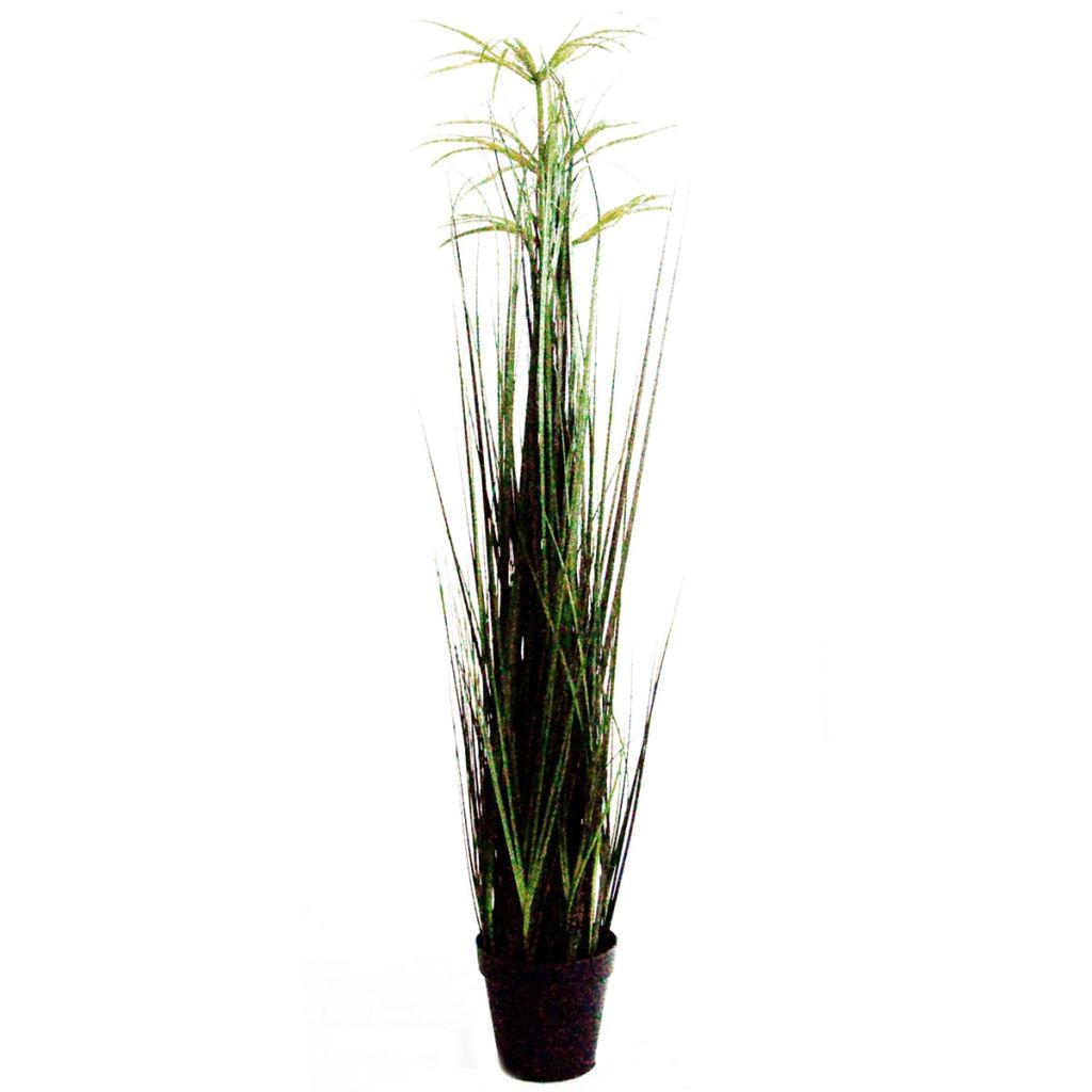 Velda Kunstpflanze Papyrus Größe L 850294