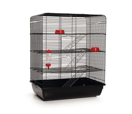 Acheter beeztees cage rat remy noir 58x38x71 cm 266815 - Cage a rat pas cher ...