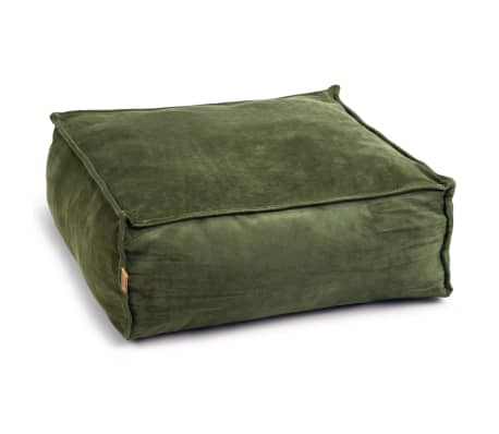 Designed by Lotte Coussin pour chat VELVETI Vert