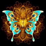Schilderij vlinder On The Wall