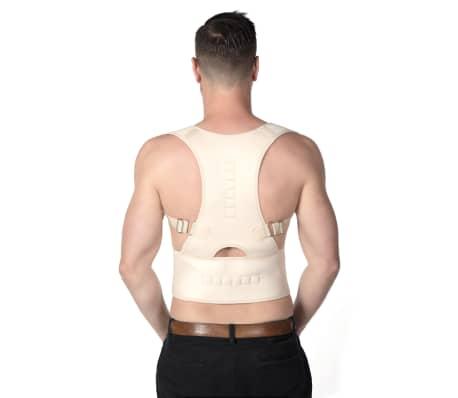 Back Support Belt Faja cinturón de soporte de espalda L-XL BSB001