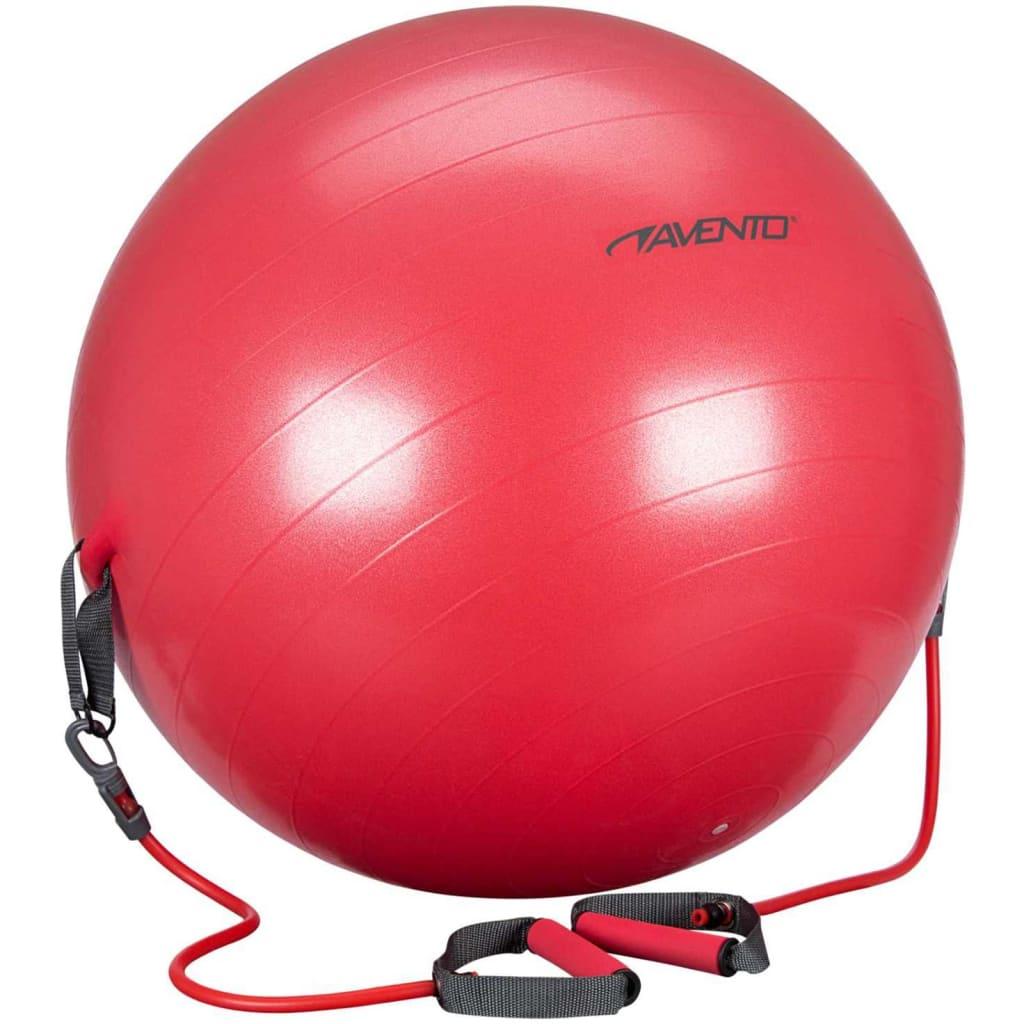 Avento Minge de fitness tuburi de rezistență roșu 65 cm 41TO-ROG-65 vidaxl.ro