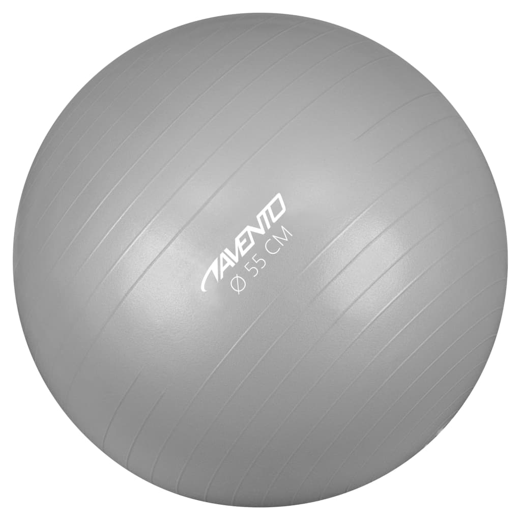 Avento Fitness/gymnastický míč průměr 55 cm stříbrný