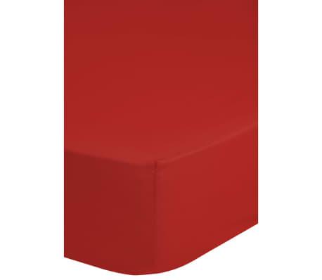 emotion spannbettlaken jersey 140x200 cm rot g nstig kaufen. Black Bedroom Furniture Sets. Home Design Ideas