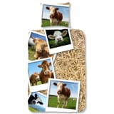 Good Morning Bettwäsche-Set 5269-P COWS 140 × 200/220 cm Mehrfarbig