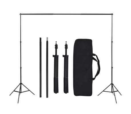 vidaXL Kit de estudio fotográfico con 5 fondos de colores y marco ajustable[5/6]