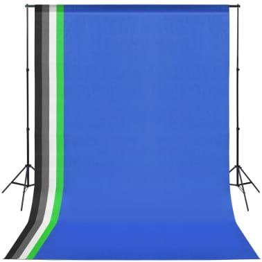 vidaXL Fotostudio set met 5 gekleurde achtergronden & 2 softboxen[3/9]