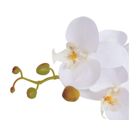 vidaXL Konstväxt Orkidé med kruka 65 cm vit[2/2]