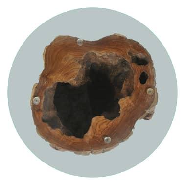 vidaXL Kavos staliukas iš tikmedžio ir stiklo, 50x40cm[6/10]