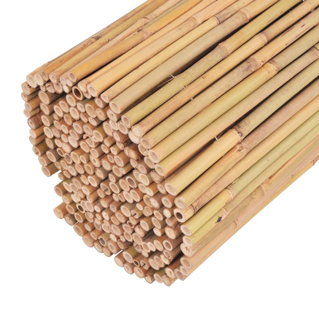 vidaXL Scherm 300x100 cm bamboe