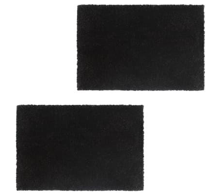 vidaXL Ovimatot 2 kpl kookoskuitu 24 mm 40x60 cm musta