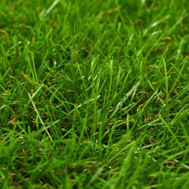 """vidaXL Artificial Grass 1x10 yd/1.57"""" Green[2/3]"""