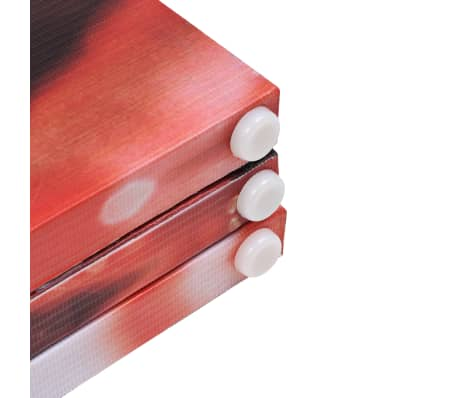 vidaXL Biombo divisor plegable 200x170 cm rosa roja[5/5]