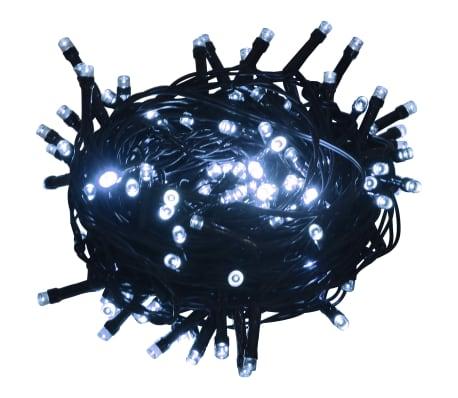 vidaXL Sznur 1000 lampek LED, IP44, 100 m, zimne białe światło