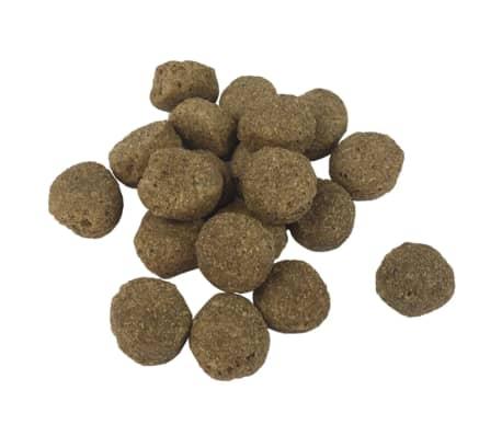 vidaXL Premium-Trockenhundefutter Adult Essence Beef 2 x 15 Kg[7/10]