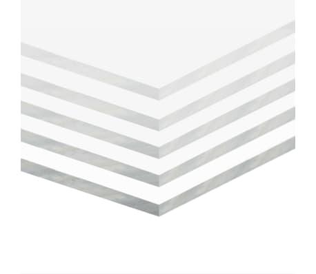 vidaXL Gjennomsiktig glasspanel akryl 5 stk 60x80 cm 6 mm[2/6]