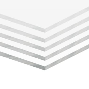 vidaXL Прозрачни акрилни плоскости, 5 бр, 60x120 см, 3 мм[2/6]