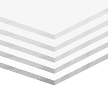 vidaXL Láminas de vidrio acrílico 5 unidades 40x60 cm 6 mm[2/6]
