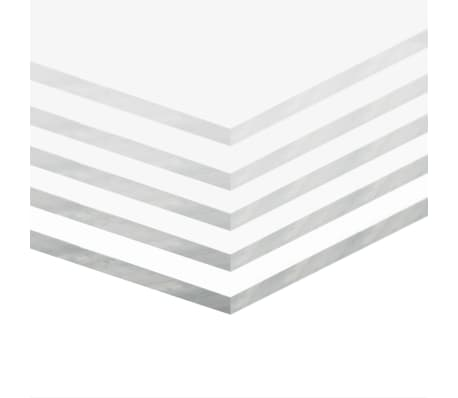 vidaXL Gjennomsiktig glasspanel akryl 5 stk 40x60 cm 10 mm[2/6]