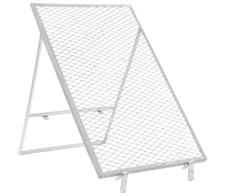 vidaXL Smėlio sietas, sidabrinės spalvos, 100x60cm[1/5]