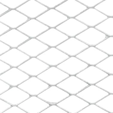 vidaXL Smėlio sietas, sidabrinės spalvos, 100x60cm[3/5]