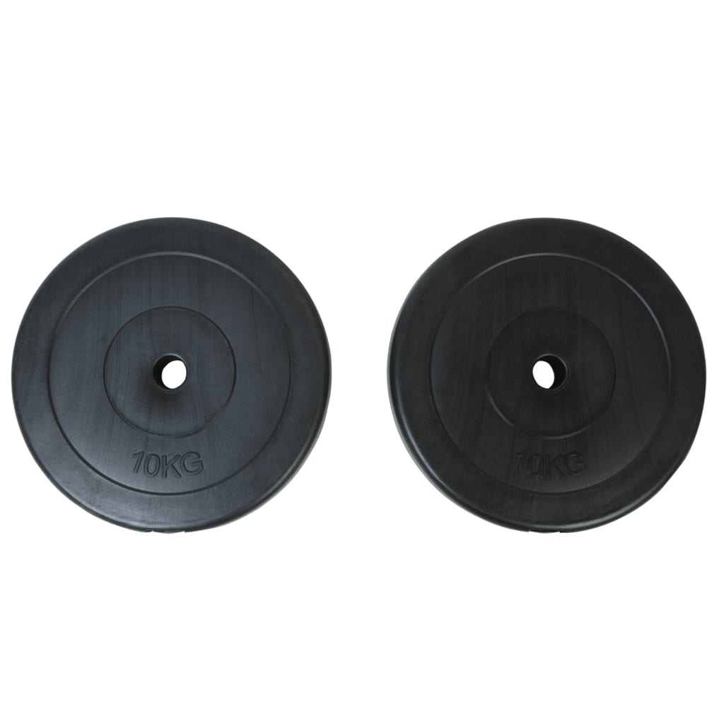 vidaXL Gewichte 2 Hantelscheiben 10kg