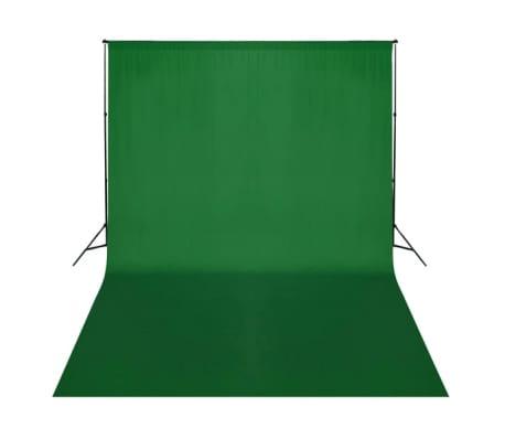 vidaXL Achtergrond chromakey 500x300 cm katoen groen[2/4]