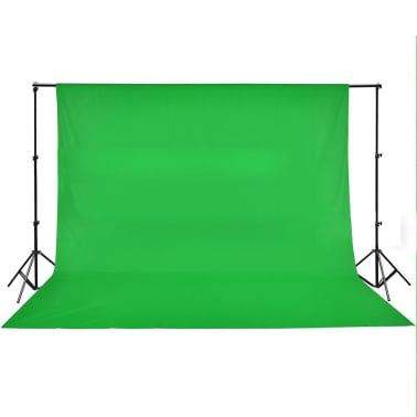 vidaXL Achtergrond chromakey 500x300 cm katoen groen[4/4]