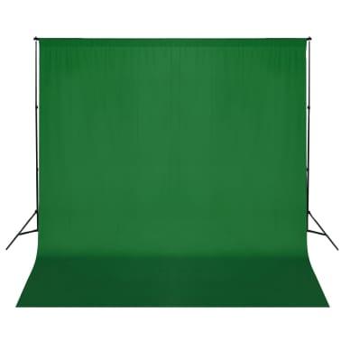 vidaXL Achtergrondondersteuningssysteem 600x300 cm groen[1/8]