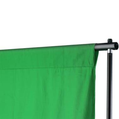 vidaXL Achtergrondondersteuningssysteem 600x300 cm groen[6/8]