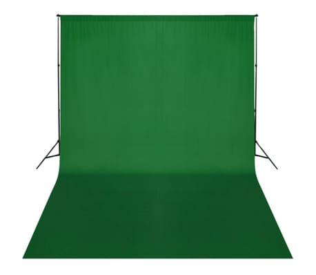 vidaXL Achtergrondondersteuningssysteem 300x300 cm groen[3/3]