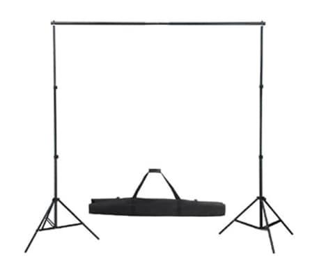 vidaXL Σετ Studio: Σύστημα Φόντου Λευκό 600 x 300 εκ. & Φωτισμός[4/9]