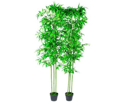 Piante Ornamentali Da Appartamento.Piante Ornamentali Da Interno Set Di 2 Bambu 190 Cm Vidaxl It