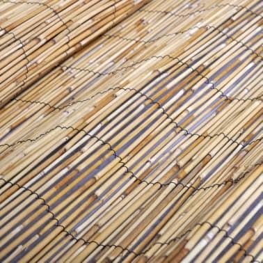 vidaXL Rieten hek 150 x 500 cm[5/5]