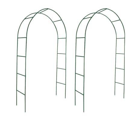 vidaXL Arcos de jardín para plantas trepadoras 2 unidades[1/4]