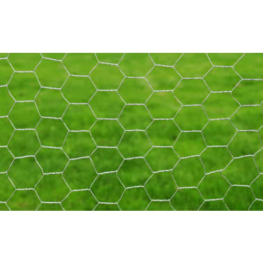 Hexagonal Wire Netting 2