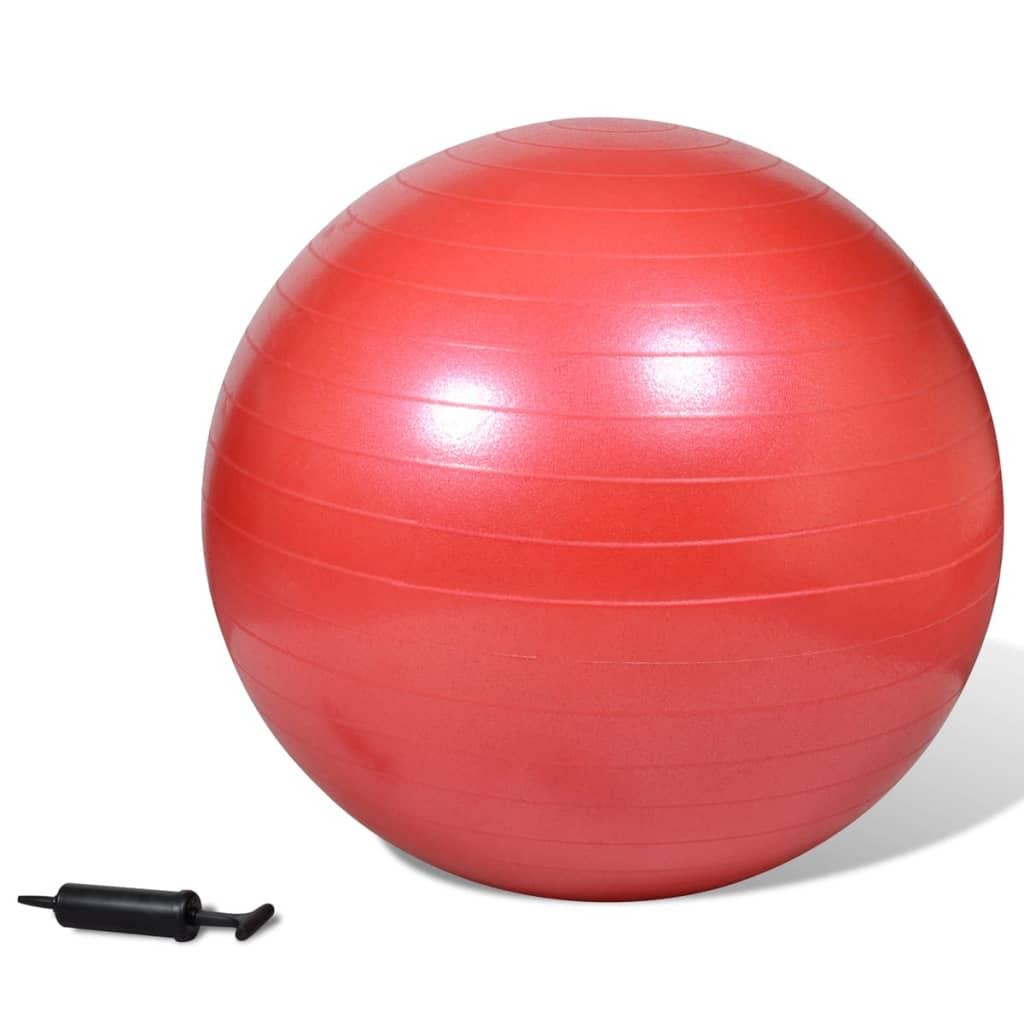 Minge de stabilitate echilibru yoga fitness, cu pompă, 65 cm, roșu poza 2021 vidaXL