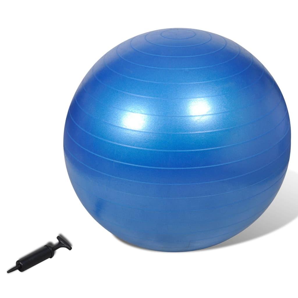 Minge de stabilitate echilibru yoga fitness, cu pompă, 65 cm, albastru poza 2021 vidaXL