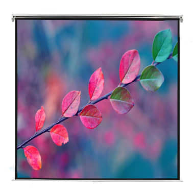 Manual Projection Screen 78.7 x 44.5 in. Matt White 16:9 Wall Ceiling[2/5]