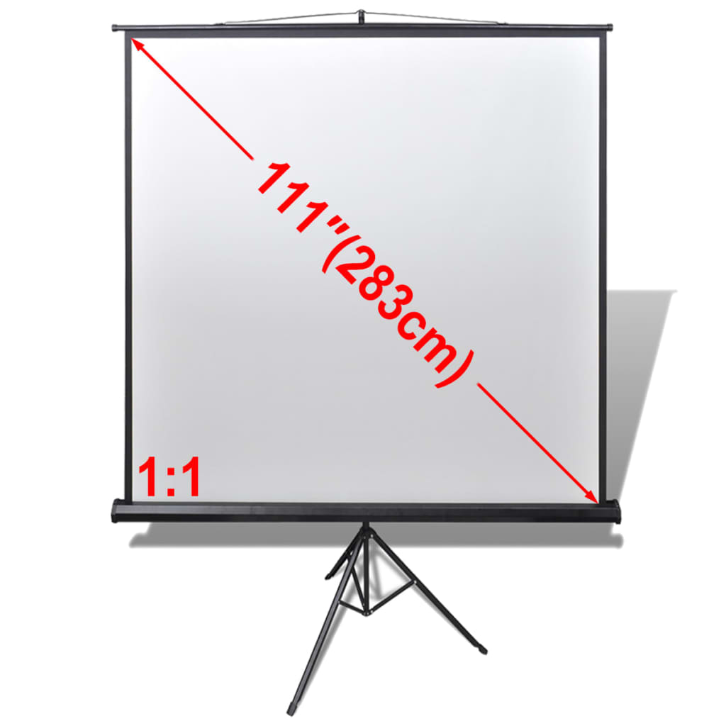 Projektori ekraan koos reguleeritava jalaga 200 x..