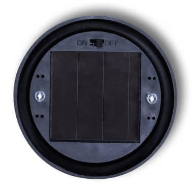 vidaXL Boule solaire extérieure d