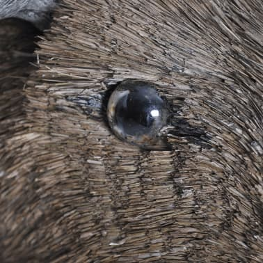 Moose Head Wall Mounted Decoration Natural Looking[5/6]