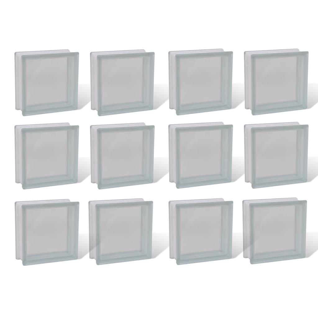 Afbeelding van vidaXL Bouwblok glas transparant 12 stuks