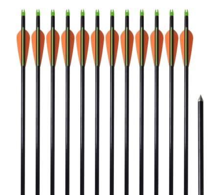 """Standard Compound Bow Arrows 30"""" 0.8 cm Fiberglass 12 pcs"""