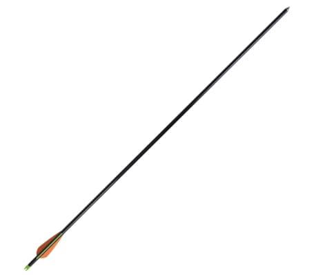 """12 flèches standard en fibre de verre 30"""" 0,8 cm pour arc à poulies[3/5]"""